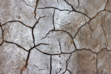 Dry Cracked Earth In The Salt ...