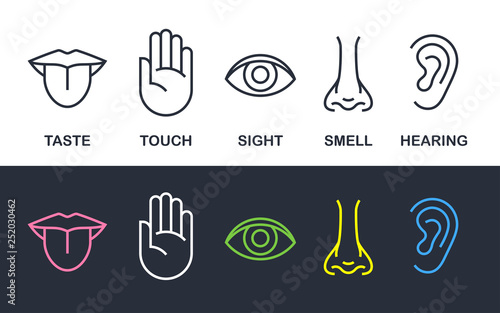 Leinwand Poster  Five human body senses sign set with nose for smell, tongue for taste, hand for touch, eye for sight, and ear for hearing - line icons
