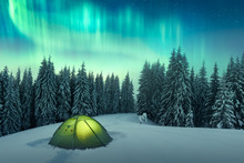 Aurora Borealis. Northern Ligh...