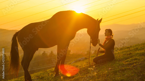 Cuadros en Lienzo SILHOUETTE: Big horse walking up to its owner while grazing in a green pasture