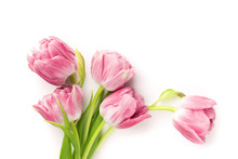 Pink Tulips Isolated On White Background. Top View.