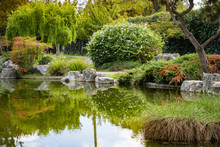 Trees Reflected In A Man Made Pond, Japanese Friendship Garden, San Jose, California