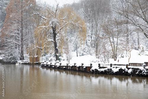 Atatürk Arboretumu Bahcekoy snowy photos Sariyer istanbul