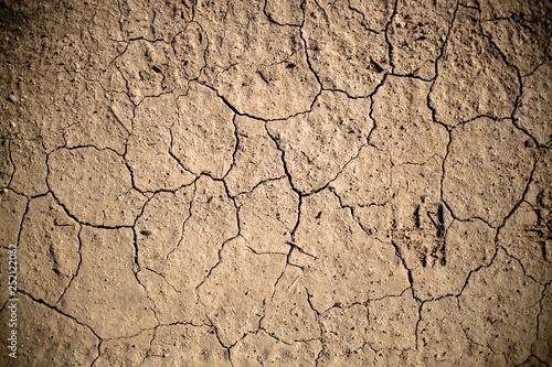 Fotografie, Obraz  Dry Cracked Earth Detail 01