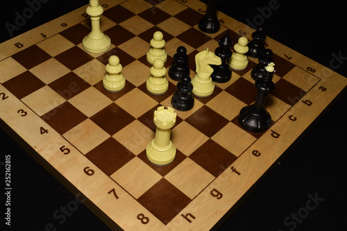 Fotografie, Obraz  Chess board under the pawns like a game background