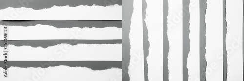 Fototapety, obrazy: Sets white torn paper on gray background. collection paper rip