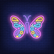Beautiful Butterfly Neon Sign