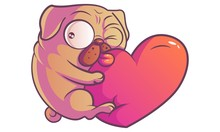Vector Cartoon Illustration. Cute Pug Is Winking While Clinging To The Heart. Isolated On White Background.