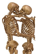 Skeletons Of Man And Woman In ...