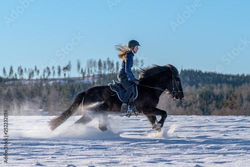 Fényképezés Swedish girl riding her Icelandic horse in deep snow