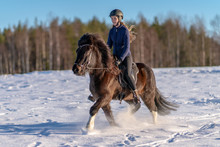 Young Swedish Woman Riding Her Icelandic Horse In Deep Snow