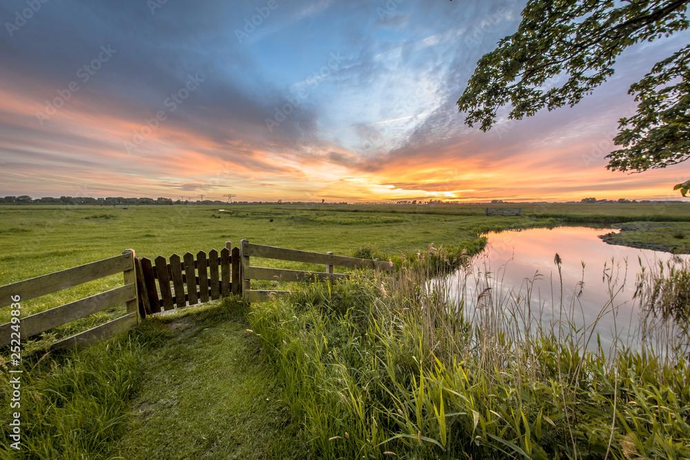 Fototapety, obrazy: View from backyard of farm