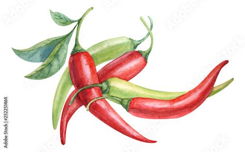 Carta da parati watercolor red and green chili pepper