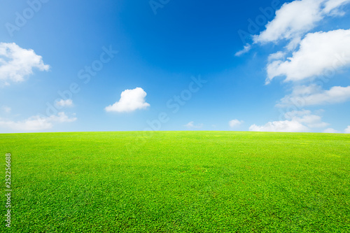 Photo sur Toile Herbe Green grass and blue sky with white clouds