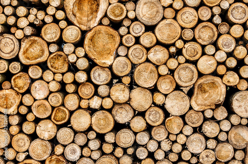 Staande foto Brandhout textuur stacked wood logs.