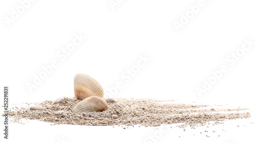 Fotografija Sea shells in sand pile isolated on white background