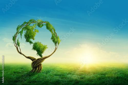 Green globe