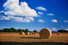 Straw Bale On Field In Autumn