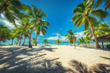 Fototapeta Krajobraz - Volleyball net on tropical beach and Caribbean sea. Punta Cana, Dominican Republic.