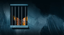 Butterfly Behind Prison Bars Graphic Abstract Background