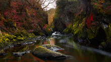 Fairy Glen In North Wales, Uni...