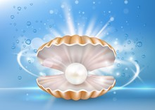 Beautiful Marine Pearl Shell, Vector Poster Banner Template