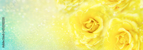 Plakaty żółte  yellow-roses-flower-soft-romance-background-with-beautiful-glitter-and-copy-space-for-header