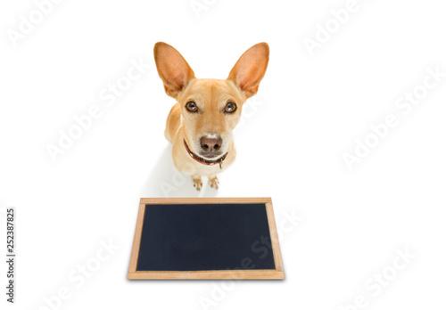 Foto op Aluminium Crazy dog dog treat with owner