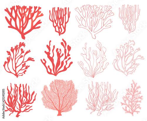 Leinwand Poster Coral set