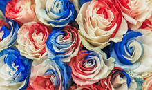 A Bouquet Of Motley, Large Roses With Multi-colored Petals White, Blue And Red Color.