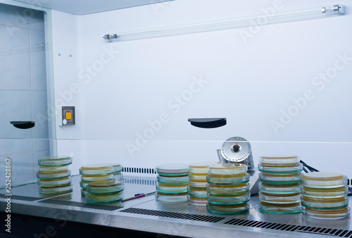 Sterile microbiological cabinet with petri dishes inside Wallpaper Mural