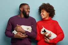 Horizontal View Of Cheerful Couple In Love Have Walk Together With Their Puppies, Look Happily At Each Other, Have Dark Skin, Isolated Over Blue Background. Positive Human Emotions, Animals Concept