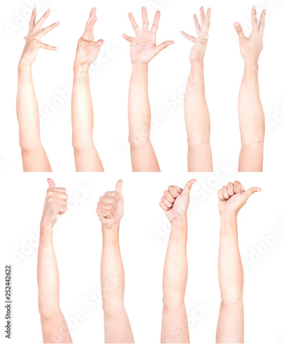 Fototapety, obrazy: Multiple Male Caucasian hand gestures isolated over the white background, set of multiple images.