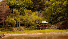 Chinese Gazebo In Nature With ...