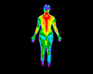 Thermographic photo of the back of the whole body of a woman with the photo showing different temperatures in a range of colors from blue showing cold to red showing hot, can be joint inflammation