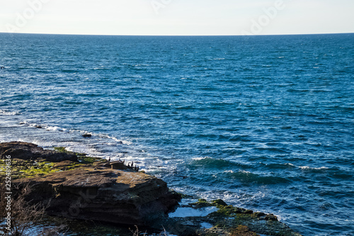 Fotografering  Overview of Pacific Ocean at La Jolla beach, where squadron of pelicans perch on