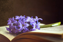 Funeral Flower And Open Book O...