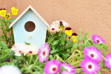 Bird House And Flowers In The Garden