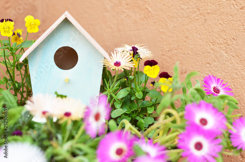 Fotografie, Obraz Bird house and flowers in the garden