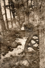 Sketch Of An American Civil War Cannon Hidden In The Trees
