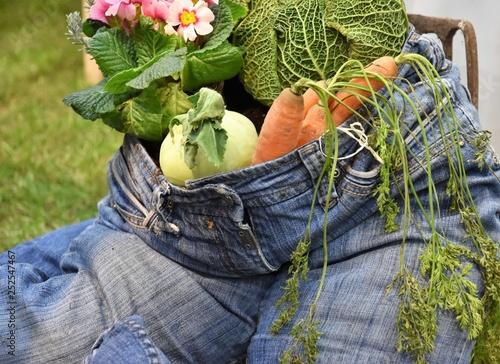 Fotografia, Obraz  Healthy lifesytyle blue jean stuffed with vegetables