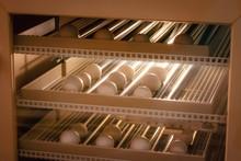 Egg Incubator Machine Background. Bird Egg With Hatching In Farm.