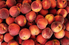 Group Of Ripe Peaches Background
