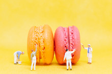 Miniature People :  Painters Coloring Macaroon
