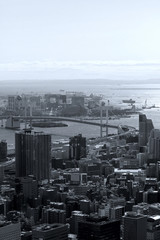 Aerial view of Tokyo Bay Area