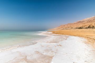 Biali solankowi kryształy przy Nieżywego morza brzeg, Środkowy wschód, Jordania