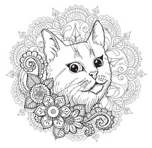 The Cat And The Mandala. Color...