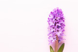 Flowers composition with hyacinths. Spring flowers on color background. Easter concept. Flat lay, top view.
