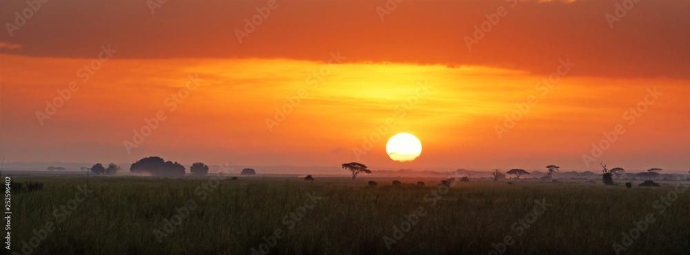 Fototapeta Sunrise in Amboseli National Park