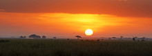 Sunrise In Amboseli National P...